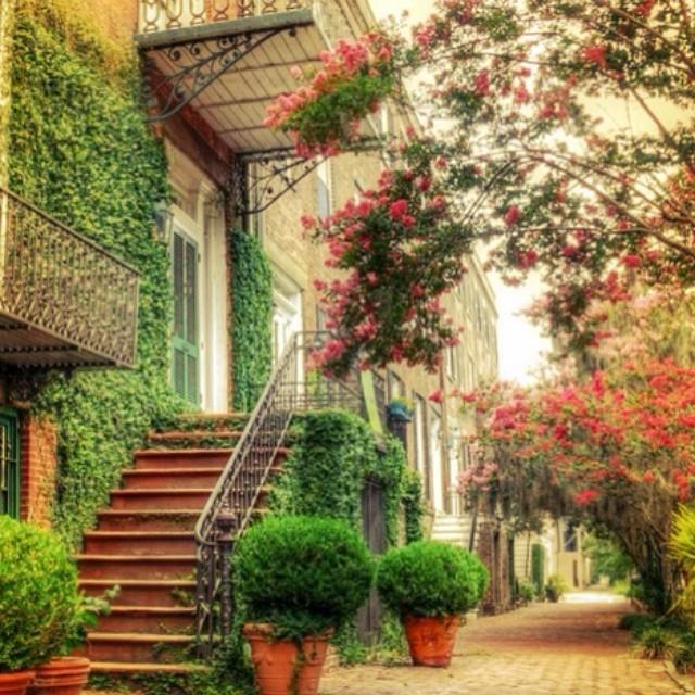 Mission Palms Apartments: Savannah Downtown Neighborhood Association